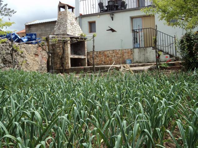 Casas rurales de viveros casa rural en viveros albacete for Viveros albacete