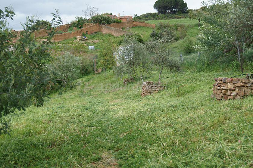 Fotos de el olivar del puerto casa rural en horcajo de los montes ciudad real - Casa rural horcajo de los montes ...