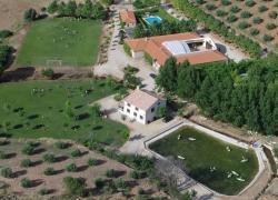 Alojamiento rural Sol Verde (Ciudad Real)