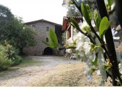 Mas Colom (Girona)