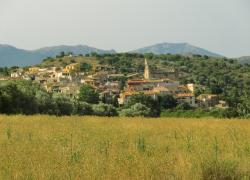 Can Puig (Girona)