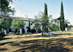 Alojamiento Rural El Cortijuelo (Granada)