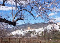 Casa Canales (Granada)