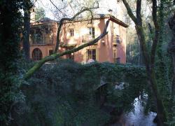 Finca el Molino Blanco (Huelva)