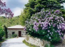 Casa Rural Peña Pintada (Madrid)