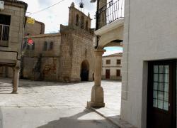 El Charro del Yeltes III (Salamanca)
