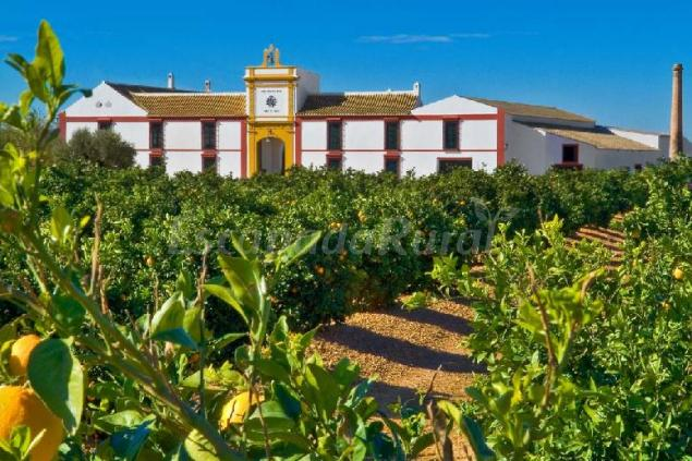 Hacienda santa ana casa rural en carmona sevilla - Casa rural carmona ...