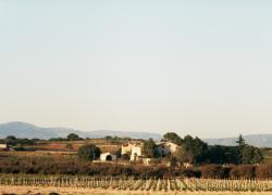 Cal Magí del Pi i Cal Eixerit (Tarragona)