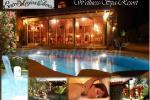 Entre Viejos Olivos - Wellness Spa Resort (Valencia)