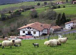 Agroturismo Kasa Barri (Vizcaya)