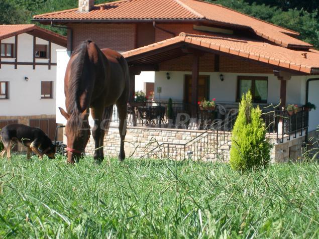 Fotos de casa rural arriortua casa rural en derio vizcaya - Casas rurales en el campo ...