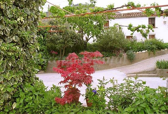 Foto di casa rural el jard n casa vacanze ayeste albacete for Casa rural el jardin