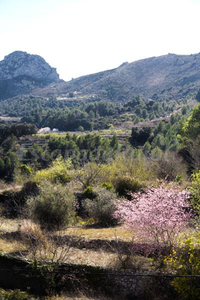 Casas rurales en la vall de laguar alicante - Casa rural la vall de gavarresa ...