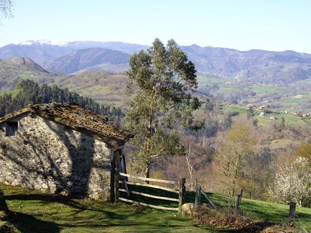 Fotos de la huertona casa de campo em infiesto asturias - Casa de campo asturias ...