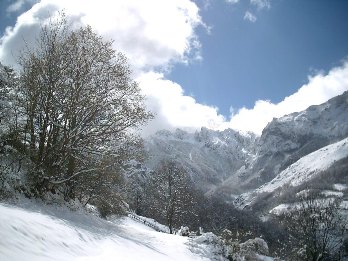 Fotos de alojamientos valle del huerna casa rural en lena asturias - Casa rural la vall de gavarresa ...