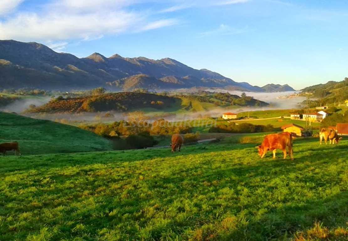 Fotos de hotel rural el otero y la casita casa rural en - Fotorural asturias ...