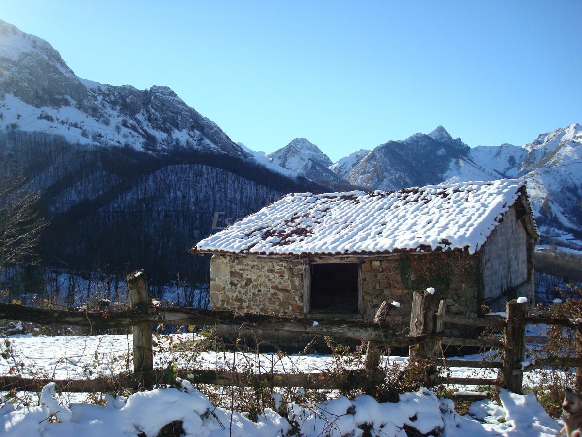 Fotos de el bosque encantado casa rural en sobrescobio asturias - Casa rural el bosque navaconcejo ...