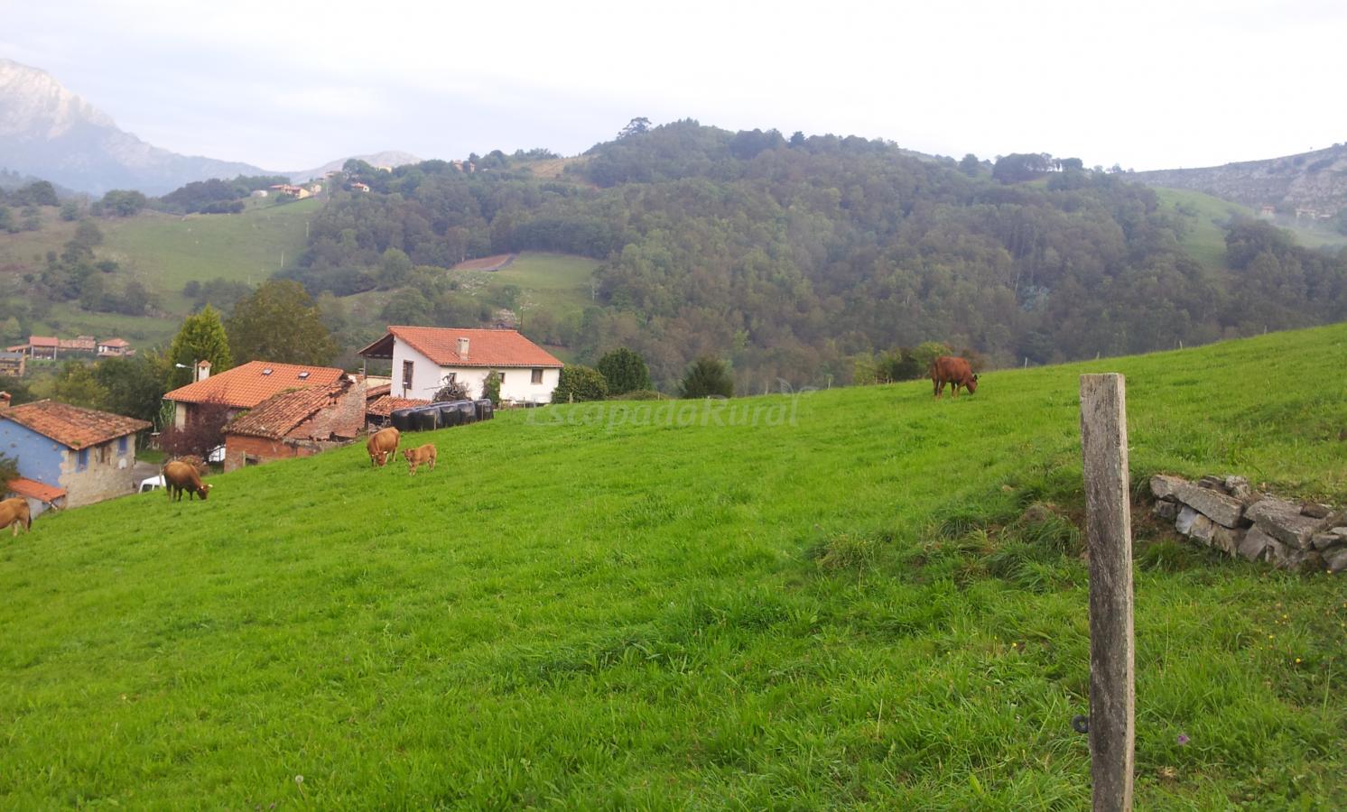 Fotos de casa rural las tablas casa rural en llanes - Fotorural asturias ...