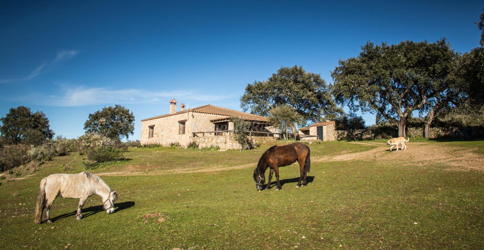 Fotos de casa rural la vega casa rural en san vicente de alc ntara badajoz - Casa rural la granja ...