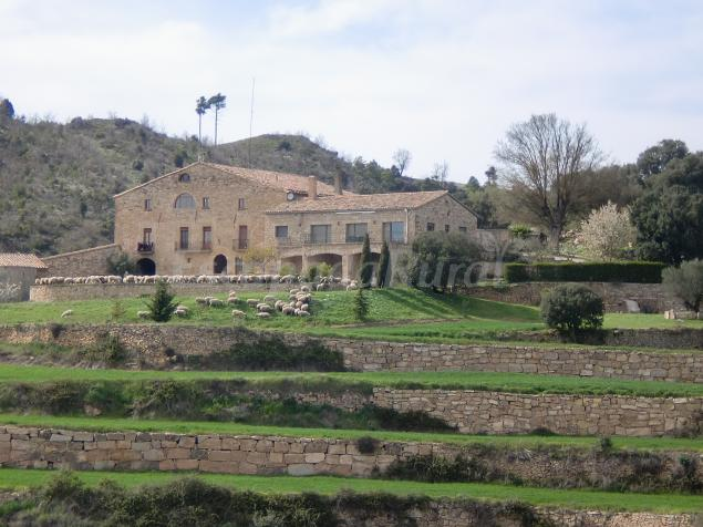 Les corts de biosca casa rural en sant mateu de bages for Piscina aguilar de segarra