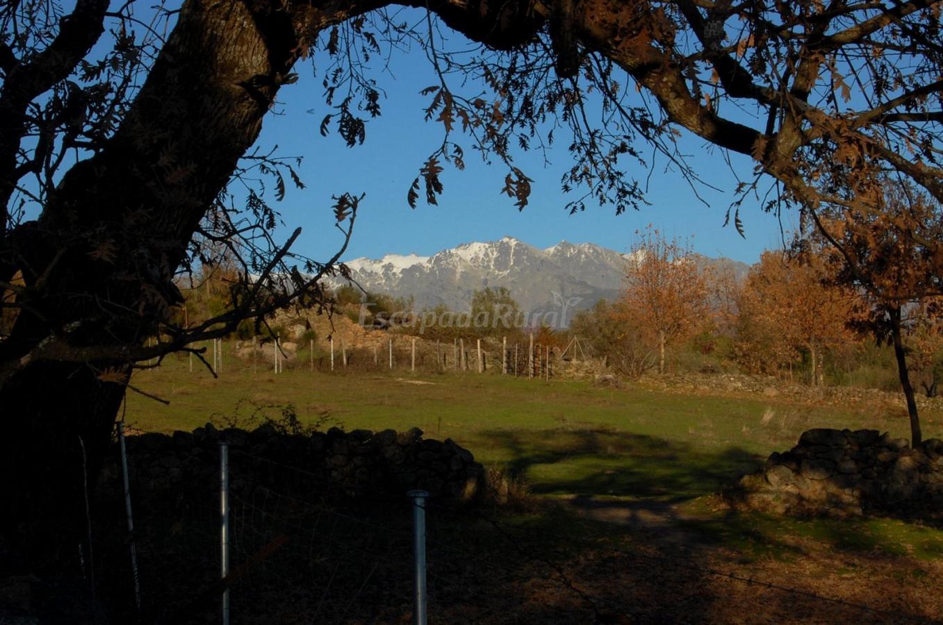Foto di la hospeder a del silencio casa rural en for Casa rural jaraiz de la vera