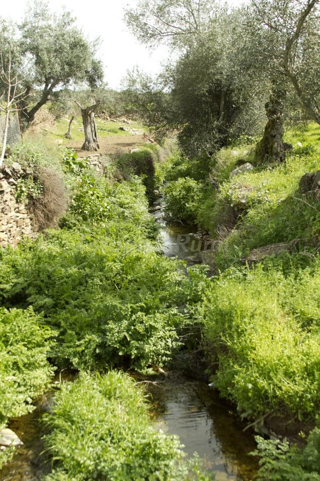 Casas rurales en zarza la mayor c ceres - Casas rurales cantabria baratas alquiler integro ...