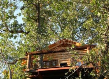 Caba as en los rboles de extremadura casa rural en - Cabana en los arboles ...