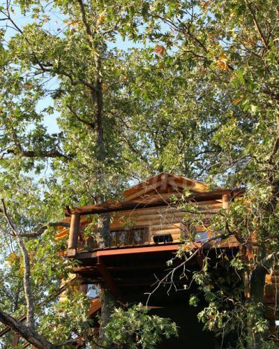 Cabanas En Los Arboles De Extremadura Casa Rural En Villasbuenas - Casas-en-los-arboles