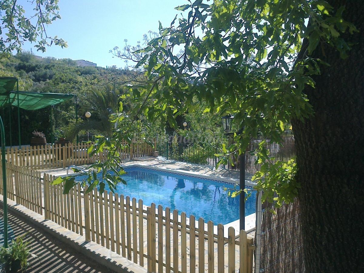 Fotos de casa jard n pentagrama casa rural en prado del for Casa rural casa jardin