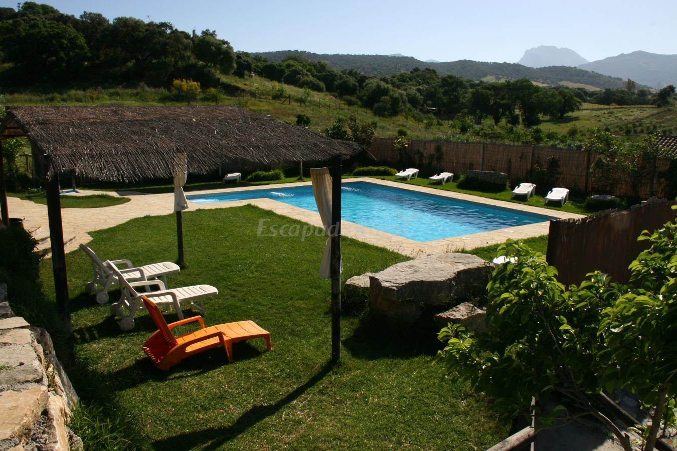 Fotos de casa rural los cuatro olivos ii casa rural en for Casas rurales sierra de madrid con piscina
