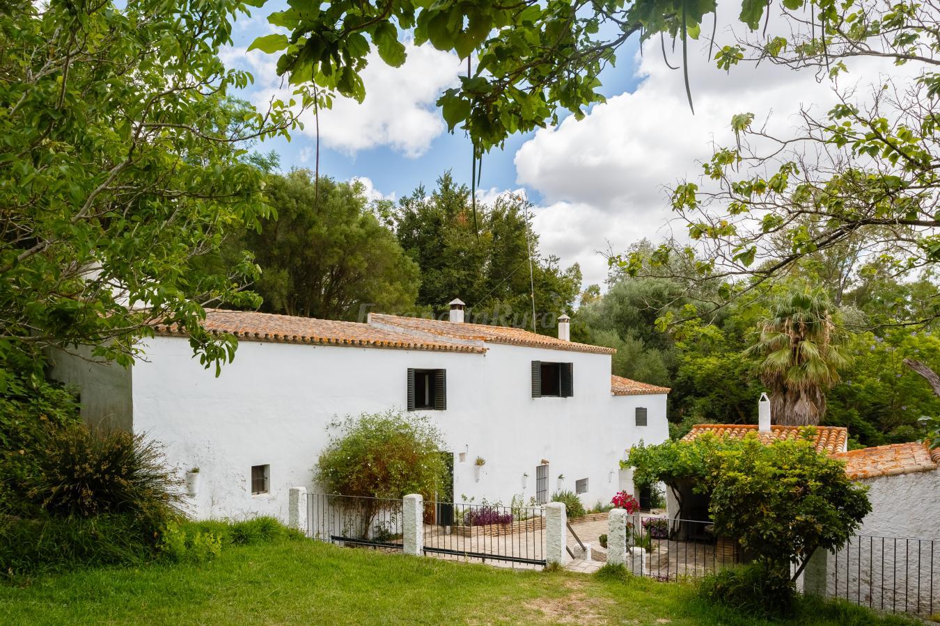 Fotos de molino naranjo casa rural en medina sidonia c diz - Casa rural medina sidonia ...