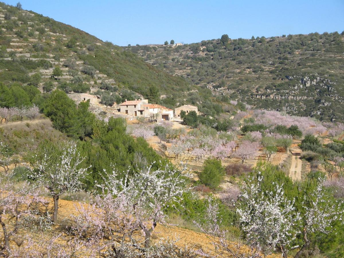 Fotos de la toscana casa rural en coves de vinrom - Casa rural en la toscana ...