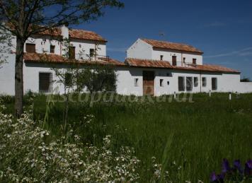 D nde ver la berrea en espa a - Casa rural vallecasar ...
