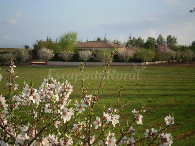 Casas rurales en gran tula de calatrava ciudad real for 56 635