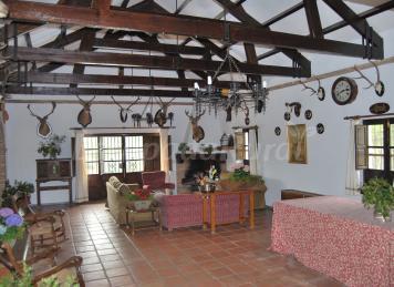 Fiesta de los patios de c rdoba - Cortijos andaluces encanto ...