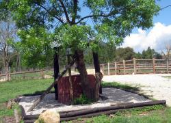 Casa reposo alma del montseny casa rural en breda girona for Casa rural montseny