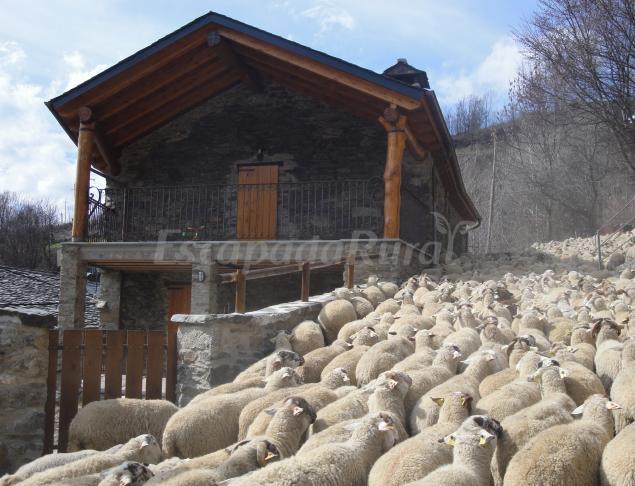 La cabanya de cal forn casa rural a queralbs girona - Casa rural queralbs ...