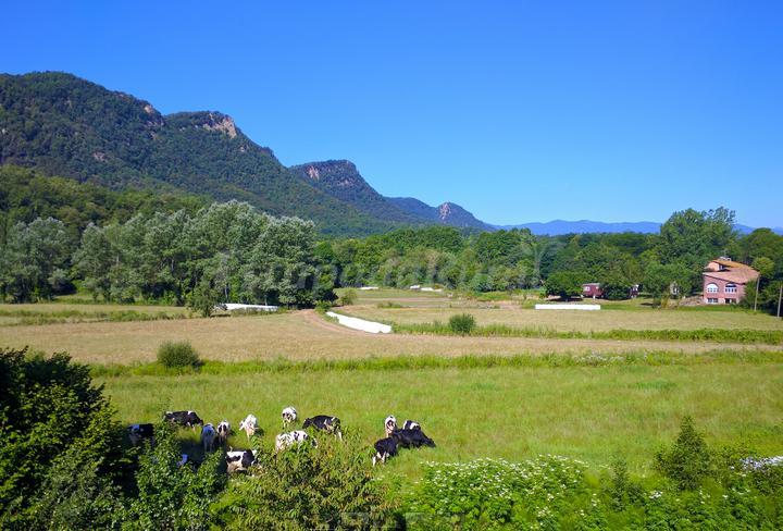 Fotos de mas prat de la pla a casa rural en santa pau girona - Casa rural santa pau ...