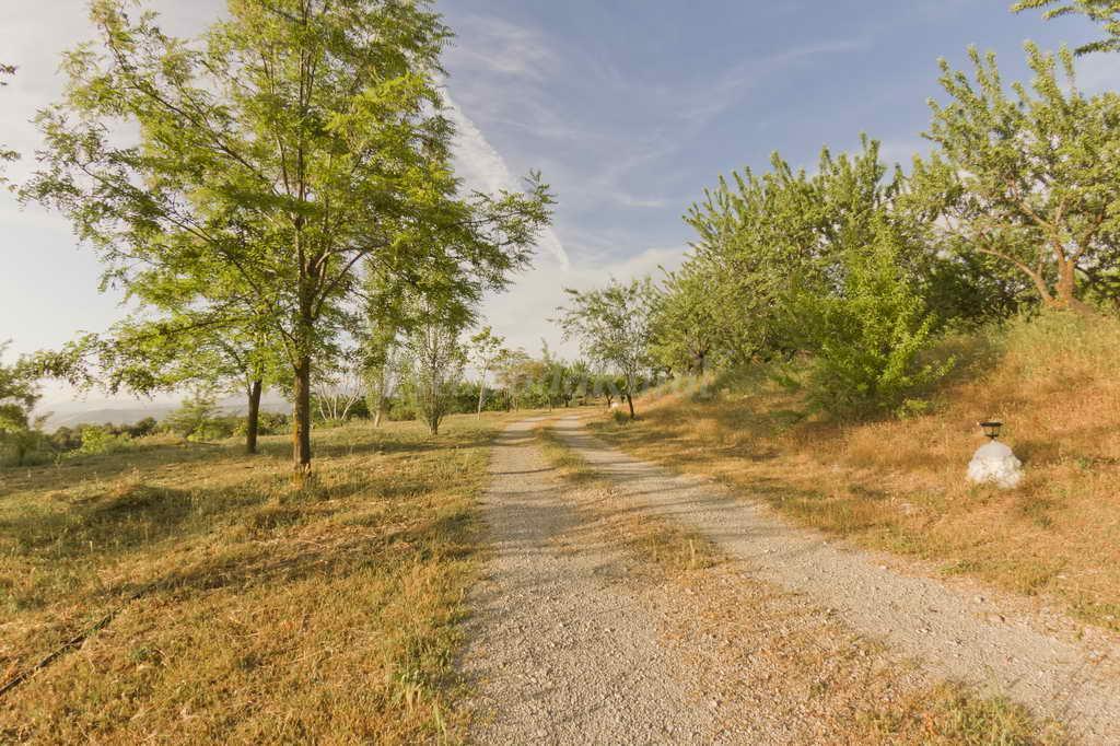 Fotos de cortijo balzain alojamientos rurales casa rural - Casas rurales en la provenza ...