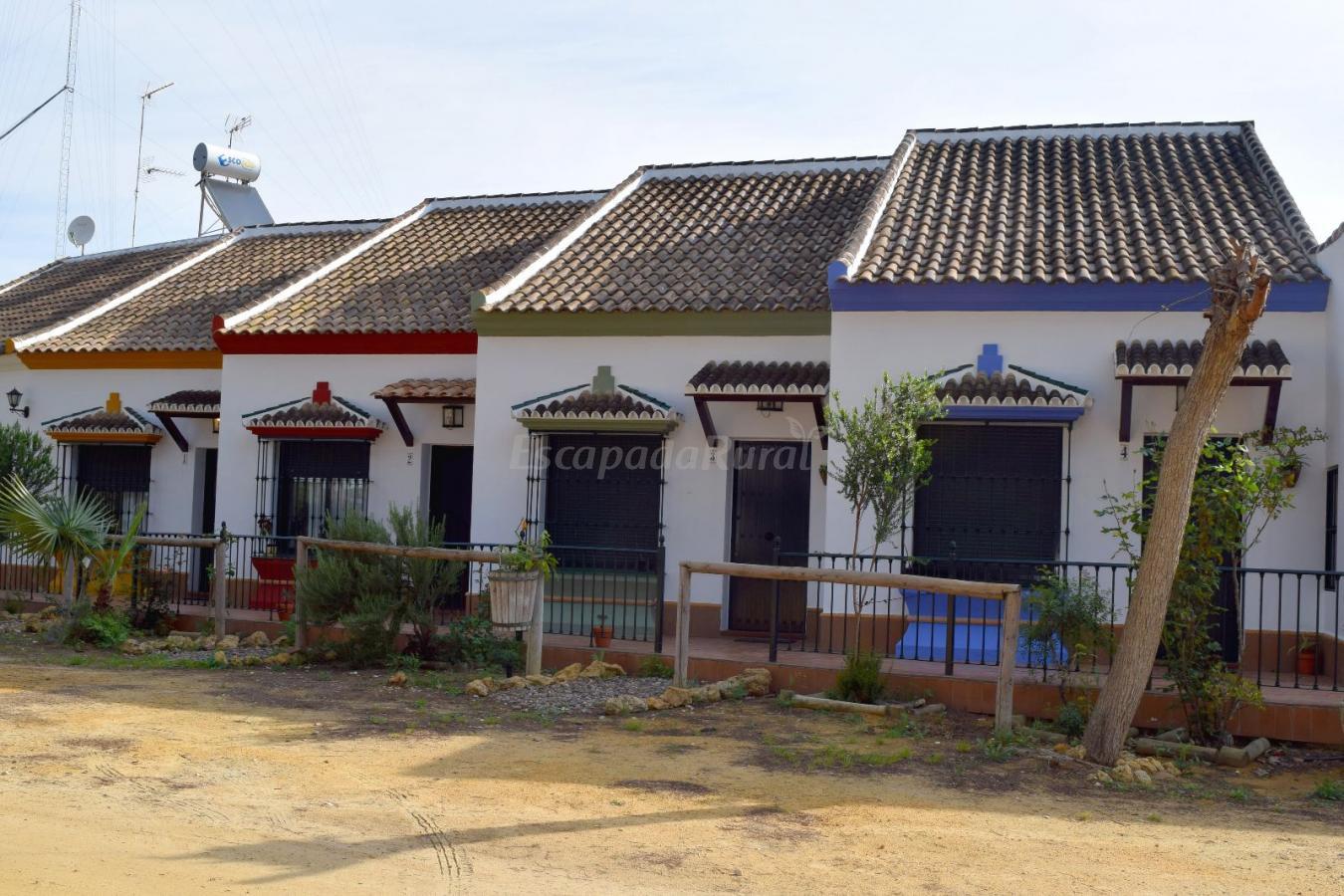 Fotos de casas rurales pinos de hinojos casa rural en hinojos huelva - Casas rurales huelva para 2 personas ...