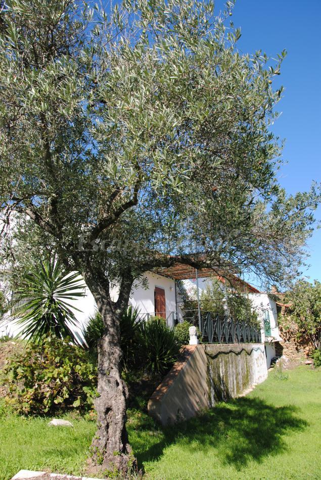 Casas Rurales En Zalamea La Real Huelva