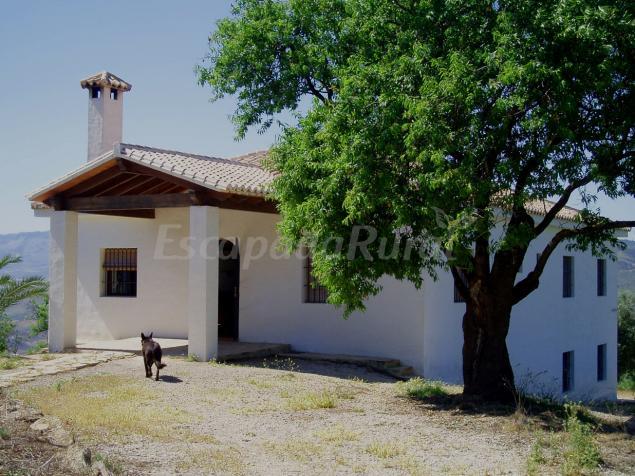 Fotos de la zenia casa rural en casabermeja m laga - Casas en la zenia ...