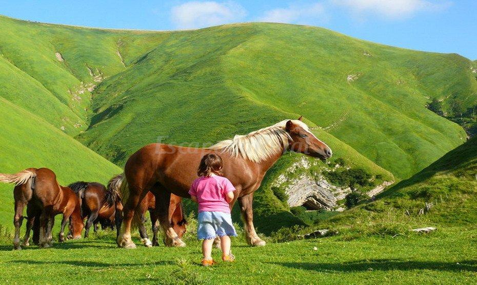 Fotos de agroturismo mari cruz casa rural en villanueva - Casa rural con granja ...