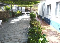 Patio y sombra de vid