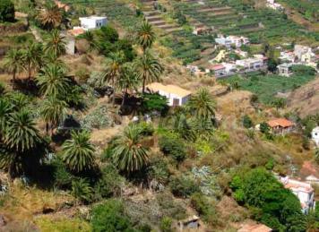 Casa Rural Pajaritos
