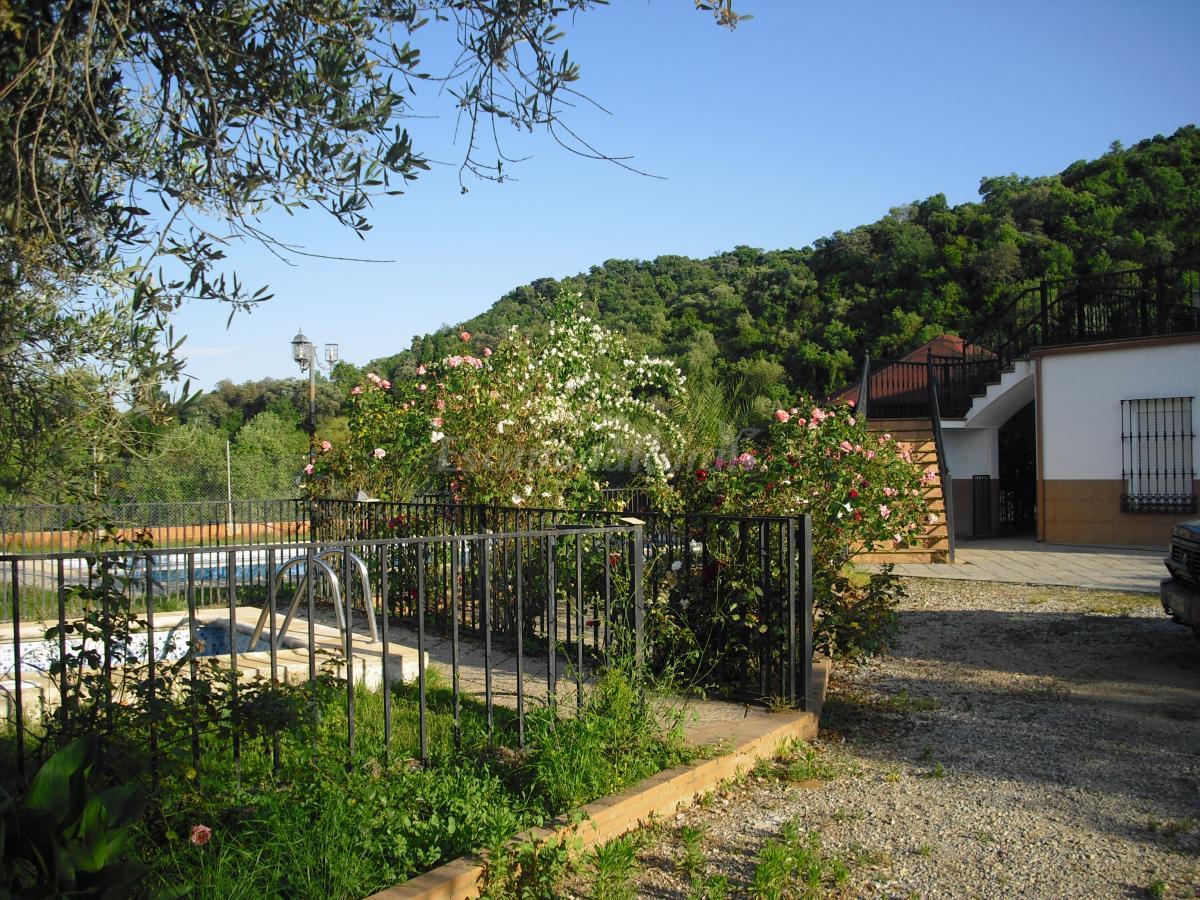 Fotos de la colina casa de campo emlas navas de la - Casa de campo sevilla ...