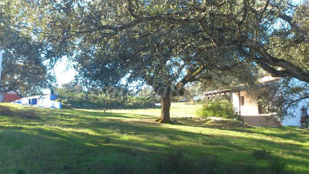 82 casas rurales cerca de el peralejo sevilla - Casas rurales cantabria baratas alquiler integro ...