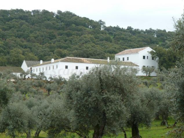 Cortijo almazara quintanilla casa de campo em el pedroso - Casa de campo sevilla ...