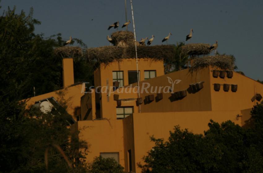 Fotos de ca ada de los pajaros casa de campo emla puebla - Casa de campo sevilla ...