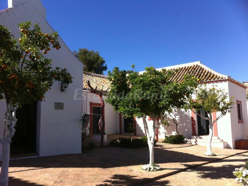 Fotos de hacienda el triguero casa de campo emcarmona - Casa de campo sevilla ...
